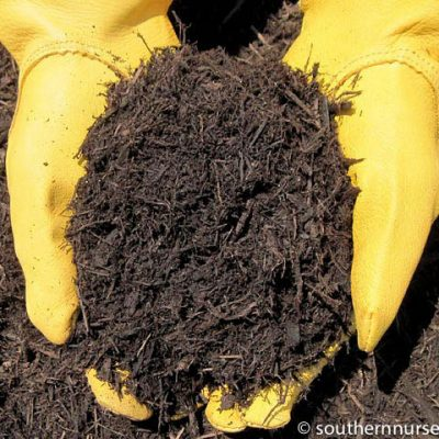 Hands holding brown hardwood mulch