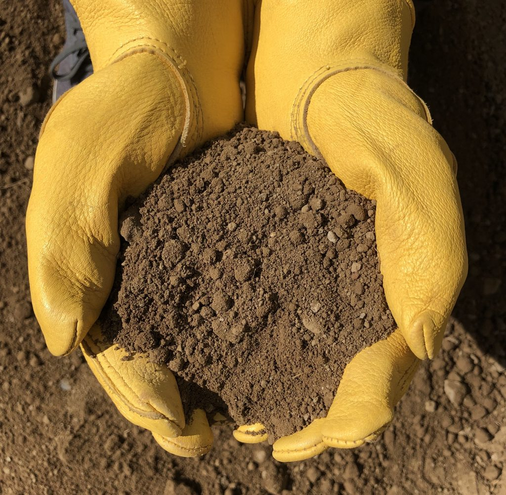 Processed Topsoil at Holy Cow Soils